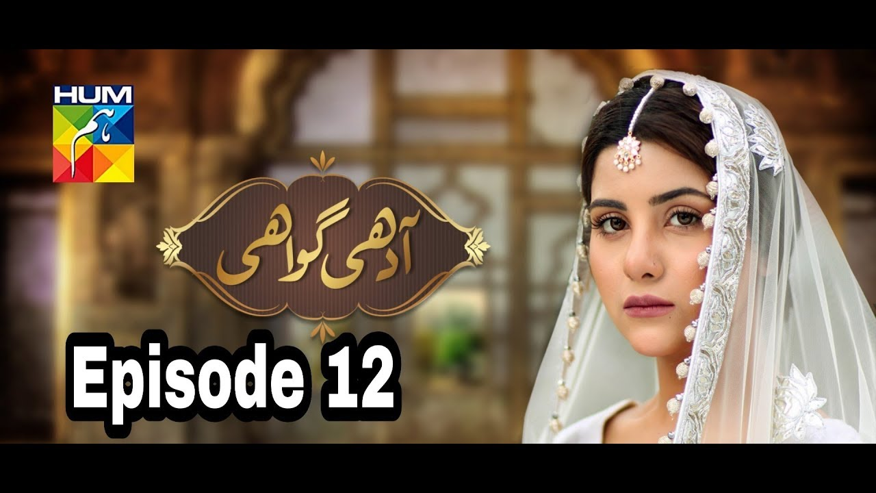 Adhi Gawahi Episode 12 Hum TV