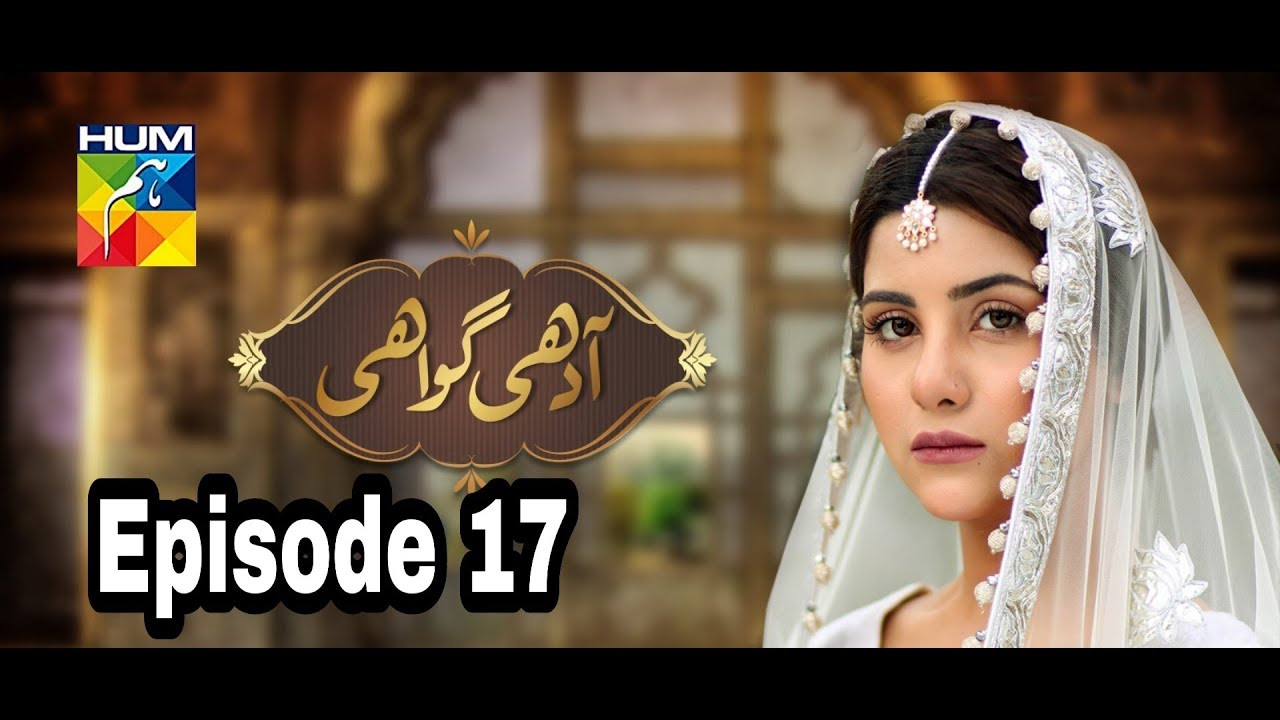 Adhi Gawahi Episode 17 Hum TV