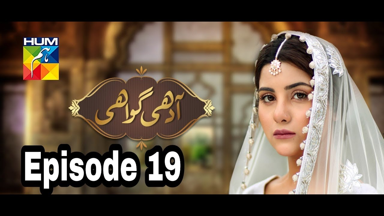 Adhi Gawahi Episode 19 Hum TV