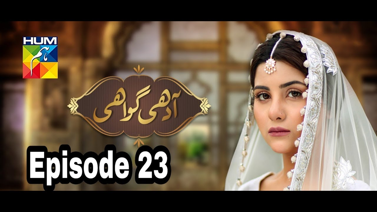 Adhi Gawahi Episode 23 Hum TV