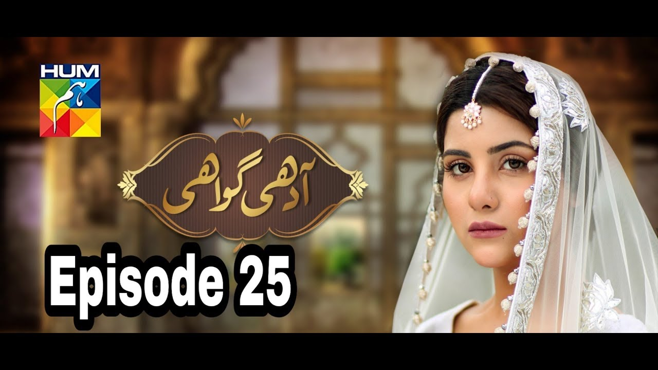 Adhi Gawahi Episode 25 Hum TV