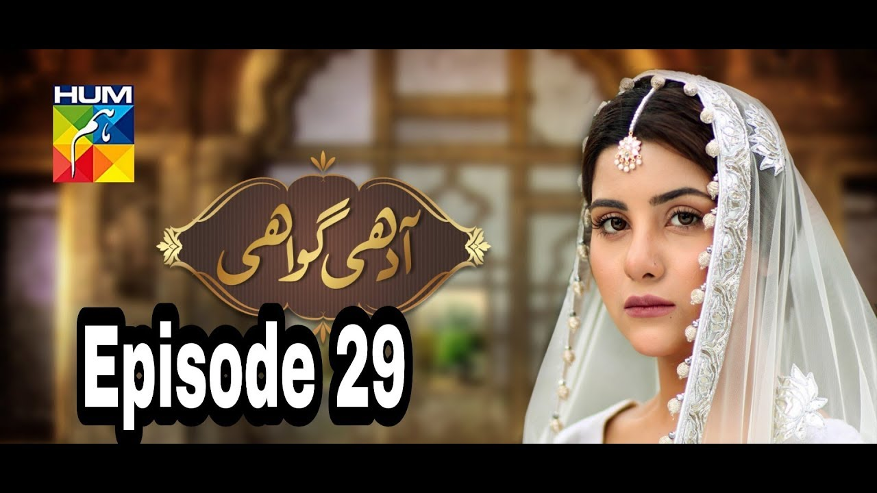 Adhi Gawahi Episode 29 Hum TV