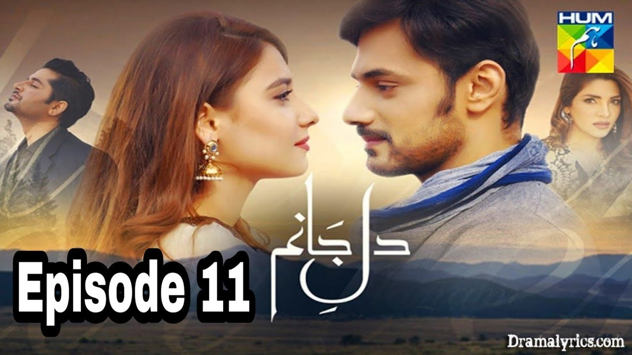 Dil e Jaanam Episode 11 Hum TV