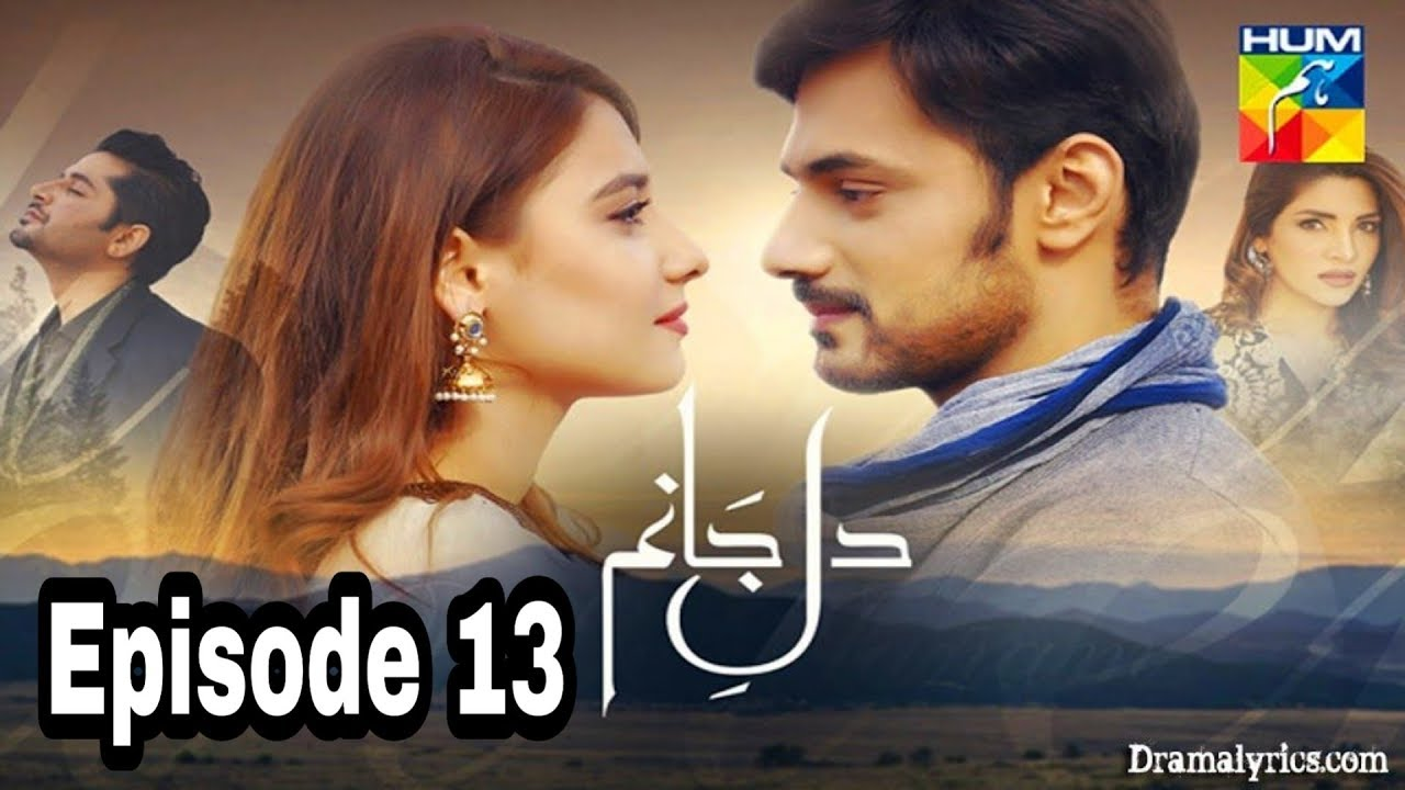 Dil e Jaanam Episode 13 Hum TV