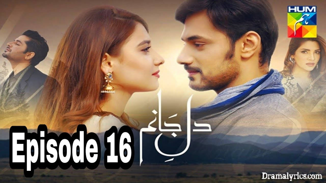 Dil e Jaanam Episode 16 Hum TV