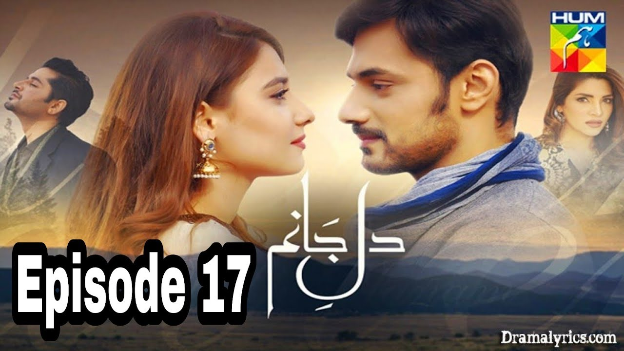 Dil e Jaanam Episode 17 Hum TV