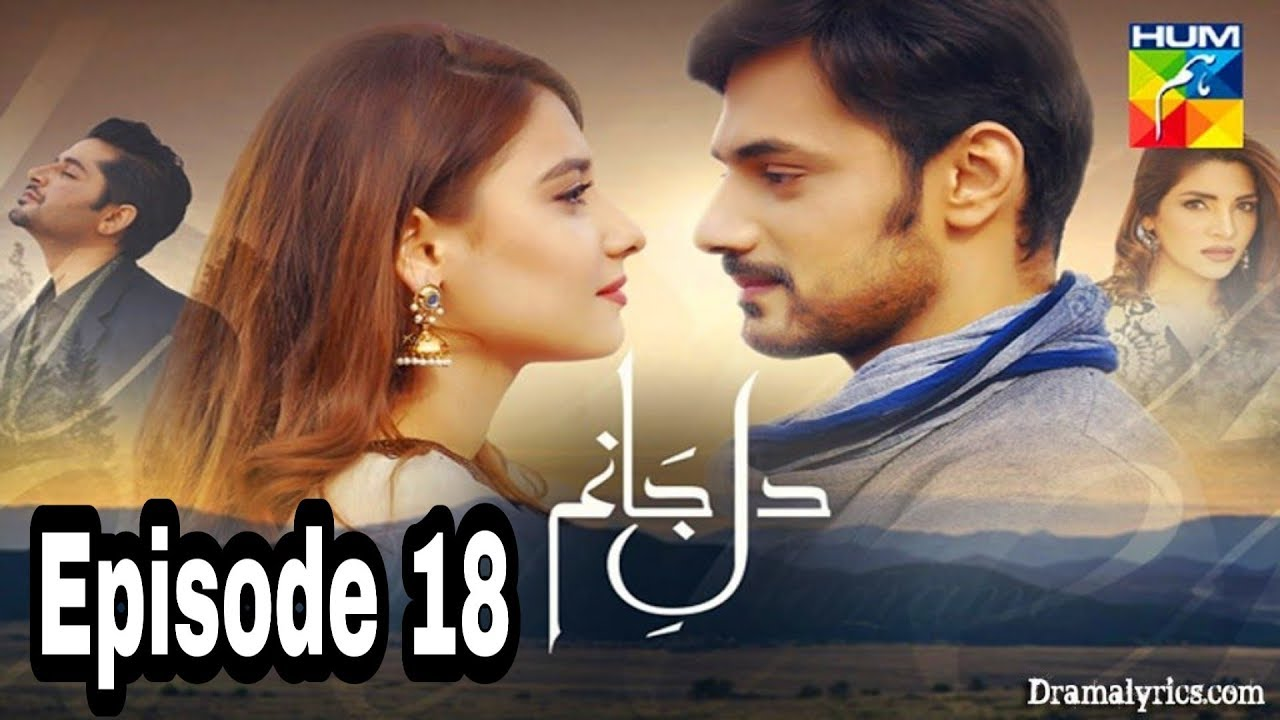Dil e Jaanam Episode 18 Hum TV