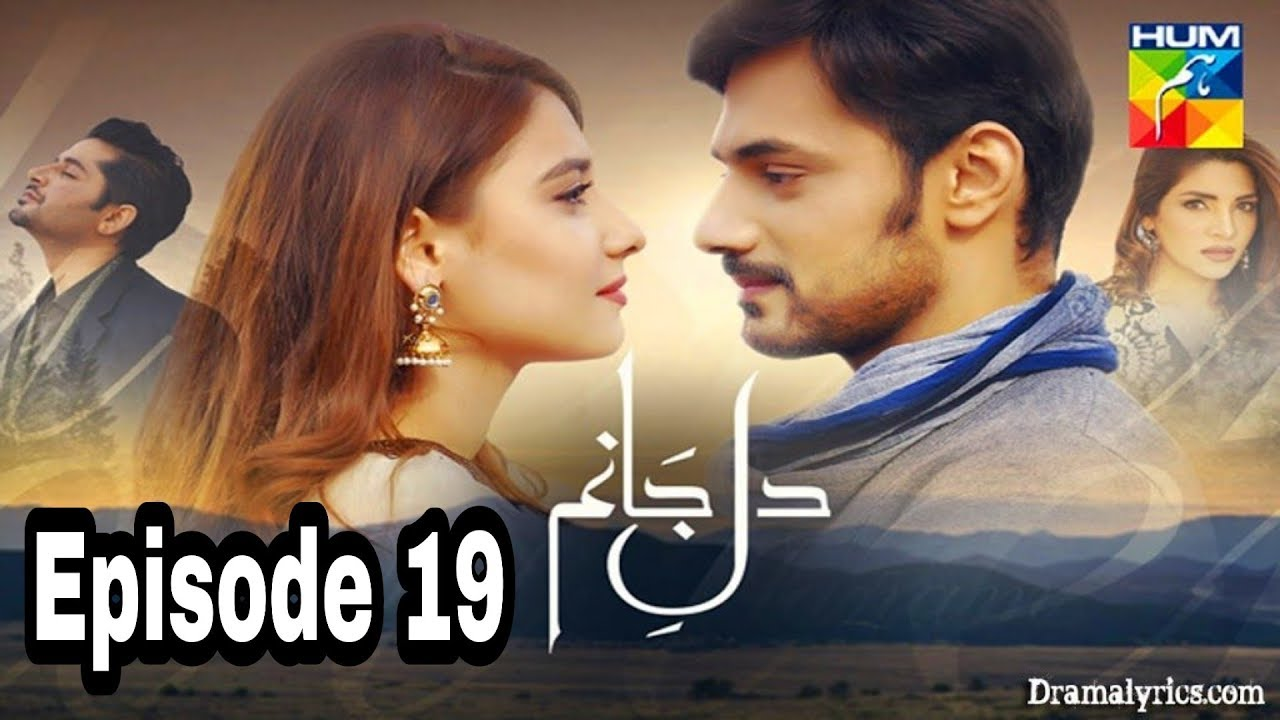 Dil e Jaanam Episode 19 Hum TV