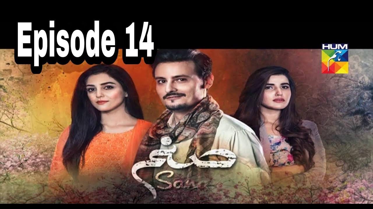 Sanam Episode 14 Hum TV