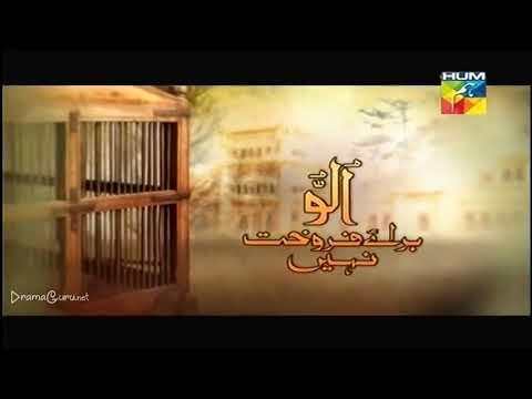 Ullu Baraye Farokht Nahi Episode 14 Hum TV