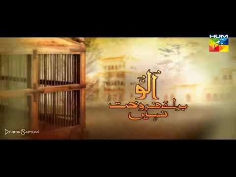 Ullu Baraye Farokht Nahi Episode 20 Hum TV