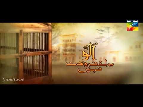 Ullu Baraye Farokht Nahi Episode 22 Hum TV