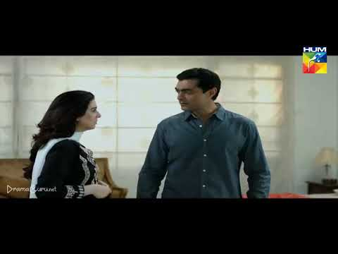 Woh Aik Pal Episode 17 Hum TV
