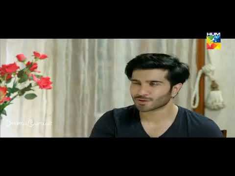 Woh Aik Pal Episode 22 Hum TV