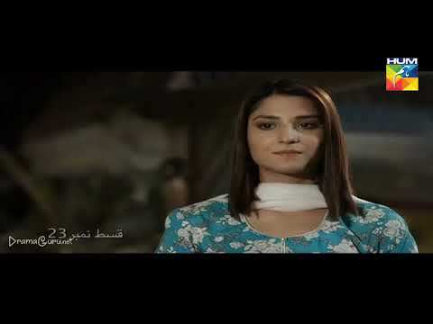 Woh Aik Pal Episode 23 Hum TV