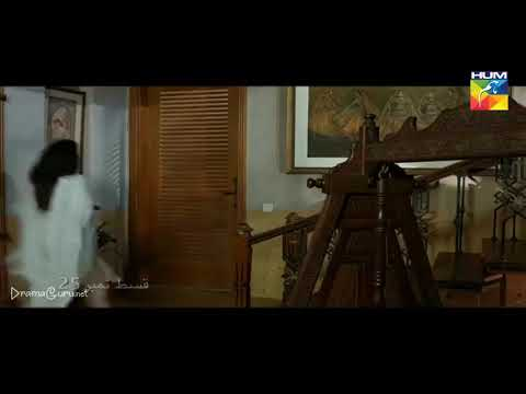 Woh Aik Pal Episode 25 Hum TV