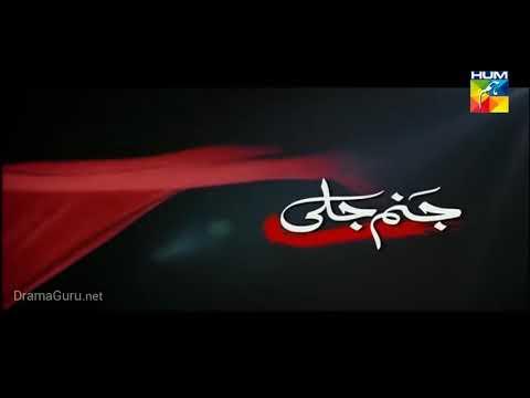 Janam Jali Episode 17 Hum TV