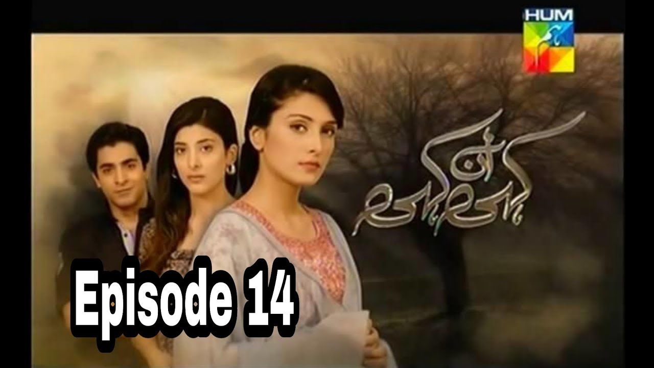 Kahi Un Kahi Episode 14 Hum TV