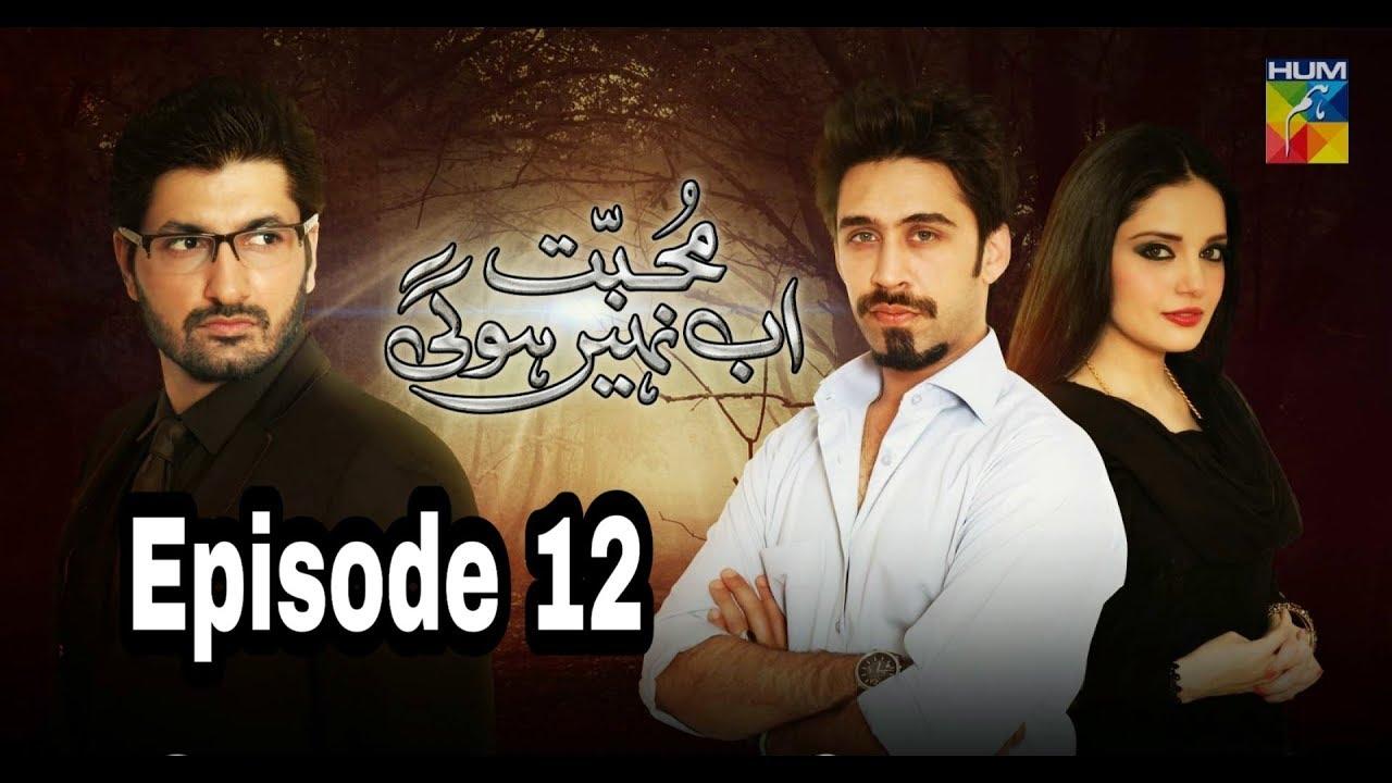 Mohabbat Ab Nahi Hogi Episode 12 Hum TV
