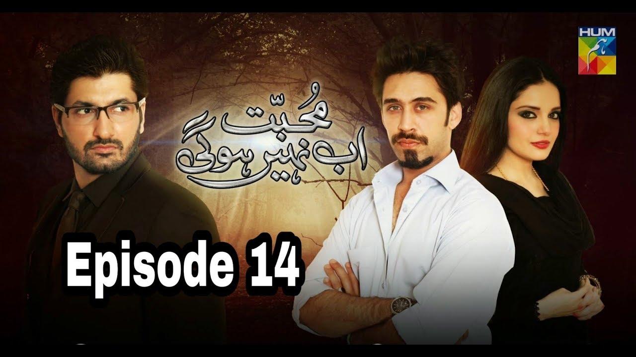 Mohabbat Ab Nahi Hogi Episode 14 Hum TV