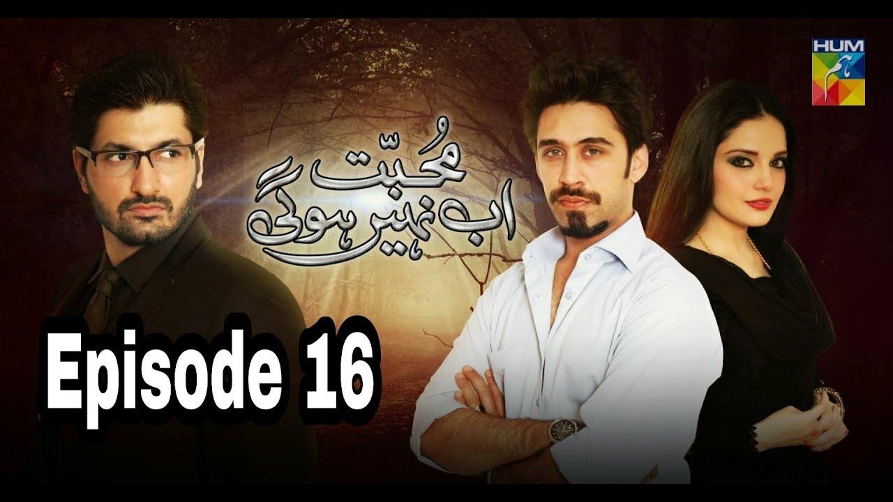 Mohabbat Ab Nahi Hogi Episode 16 Hum TV