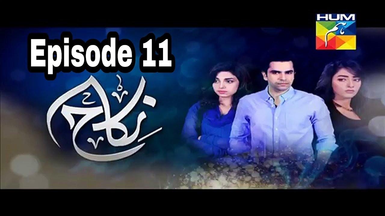 Nikah Episode 11 Hum TV