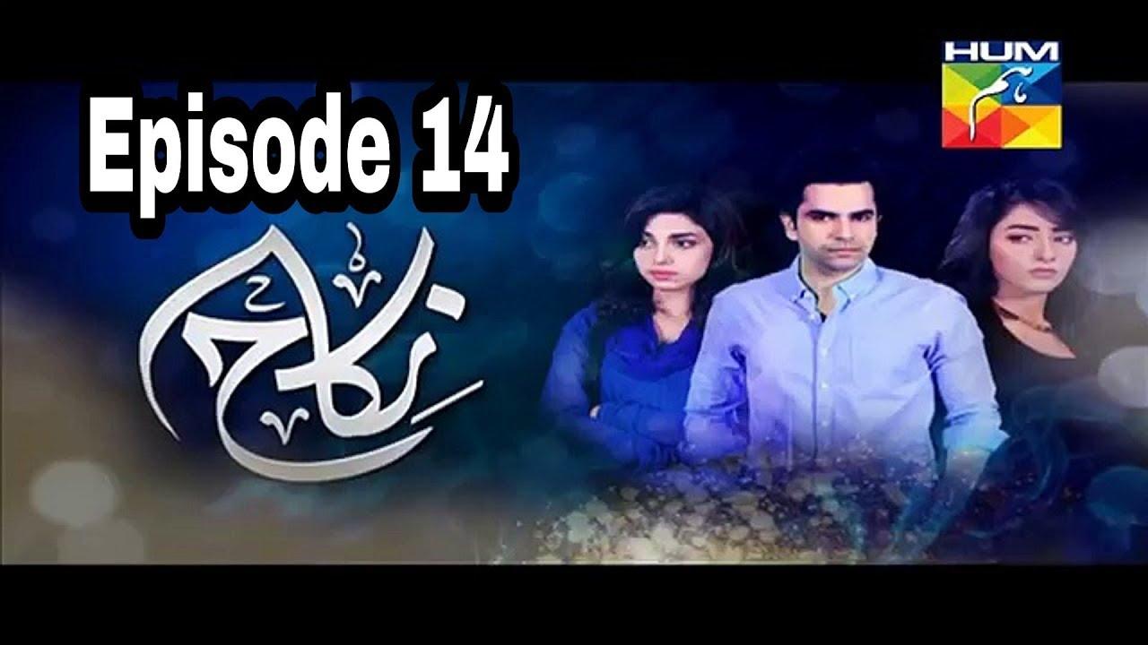Nikah Episode 14 Hum TV