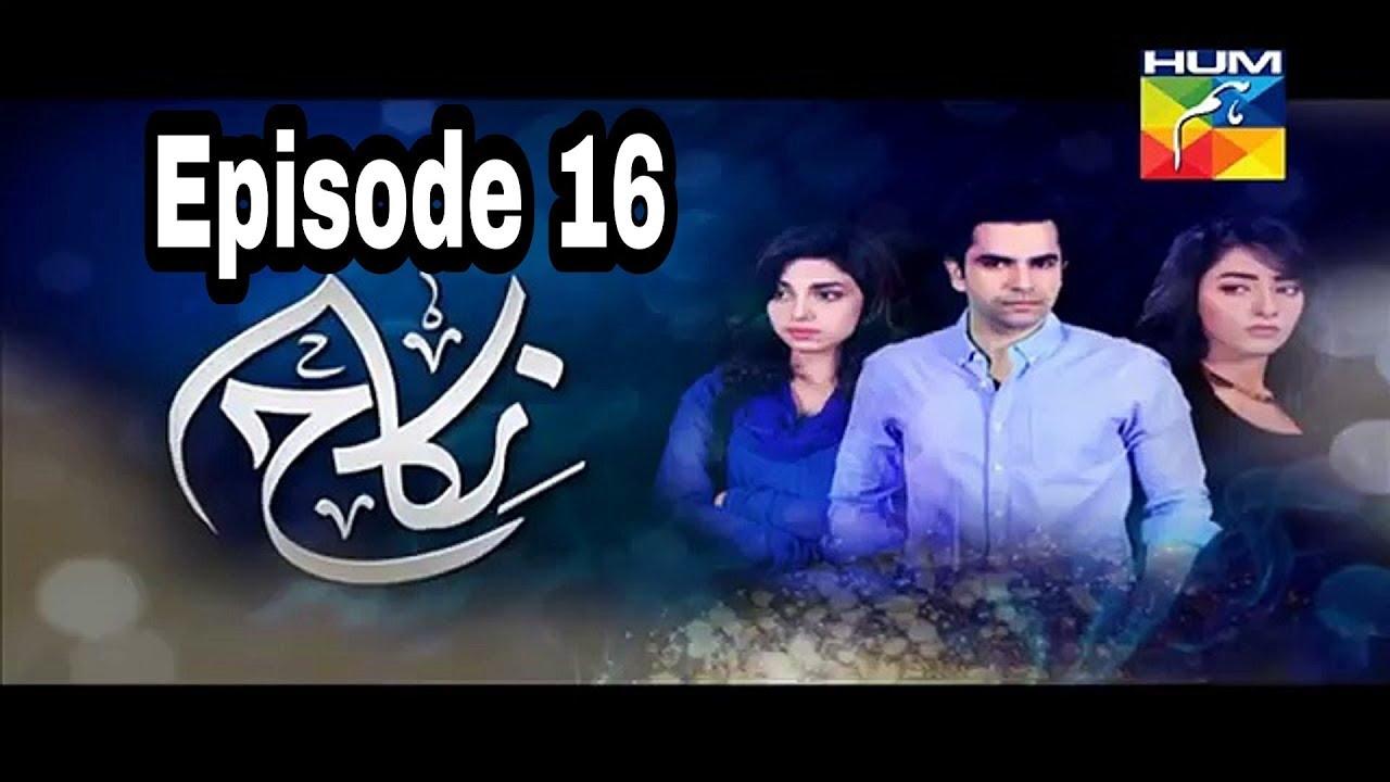 Nikah Episode 16 Hum TV