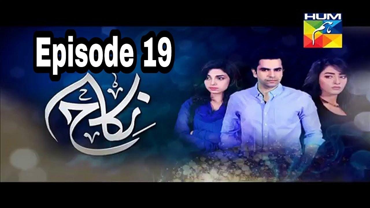Nikah Episode 19 Hum TV