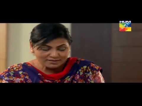 Saya e Dewar Bhi Nahi Episode 20 Hum TV