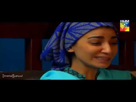 Saya e Dewar Bhi Nahi Episode 23 Hum TV