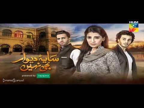 Saya e Dewar Bhi Nahi Episode 25 Hum TV