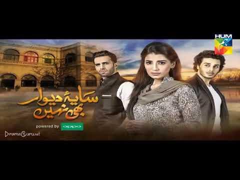 Saya e Dewar Bhi Nahi Episode 28 Last Episode Hum TV