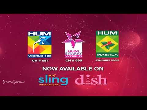 Saya e Dewar Bhi Nahi Episode 3 Hum TV