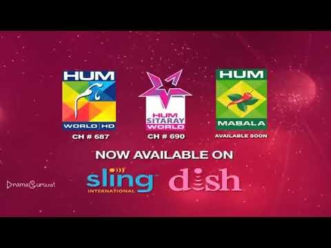 Saya e Dewar Bhi Nahi Episode 6 Hum TV