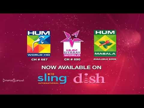 Saya e Dewar Bhi Nahi Episode 8 Hum TV