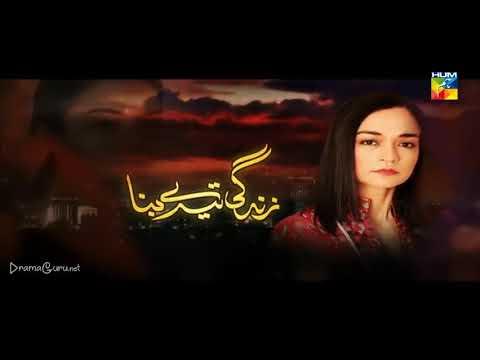 Zindagi Tere Bina Episode 16 Hum TV