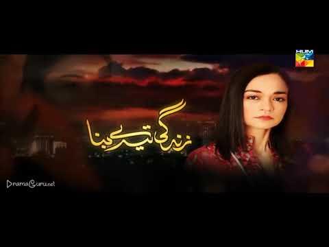 Zindagi Tere Bina Episode 17 Last Episode Hum TV