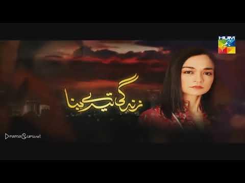 Zindagi Tere Bina Episode 4 Hum TV