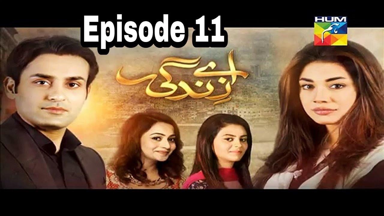 Aye Zindagi Episode 11 Hum TV