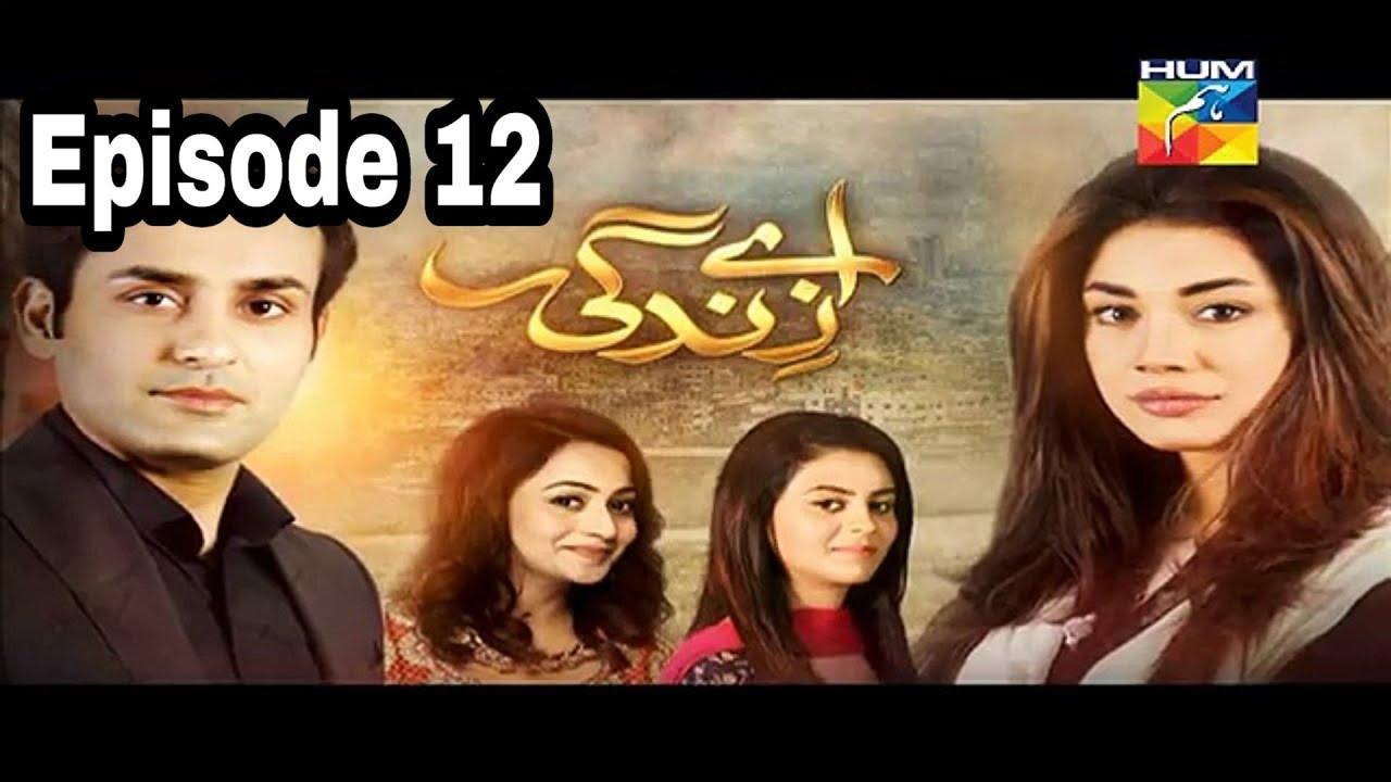 Aye Zindagi Episode 12 Hum TV