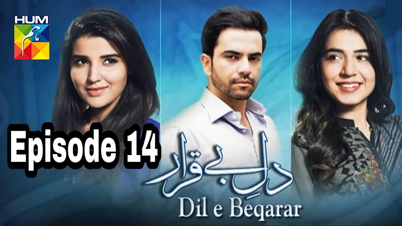 Dil E Beqarar Episode 14 Hum TV