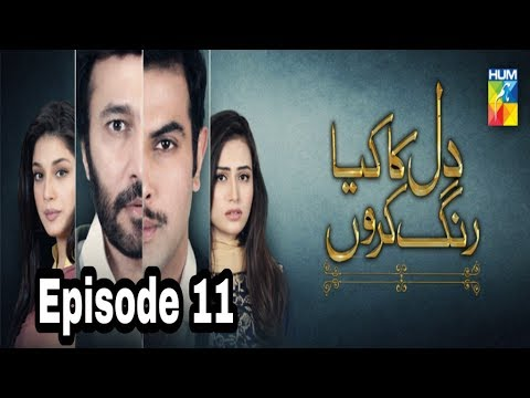 Dil Ka Kya Rung Karun Episode 11 Hum TV
