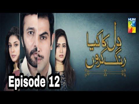 Dil Ka Kya Rung Karun Episode 12 Hum TV