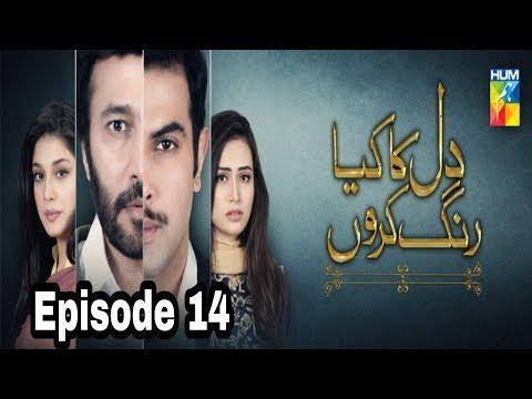 Dil Ka Kya Rung Karun Episode 14 Hum TV