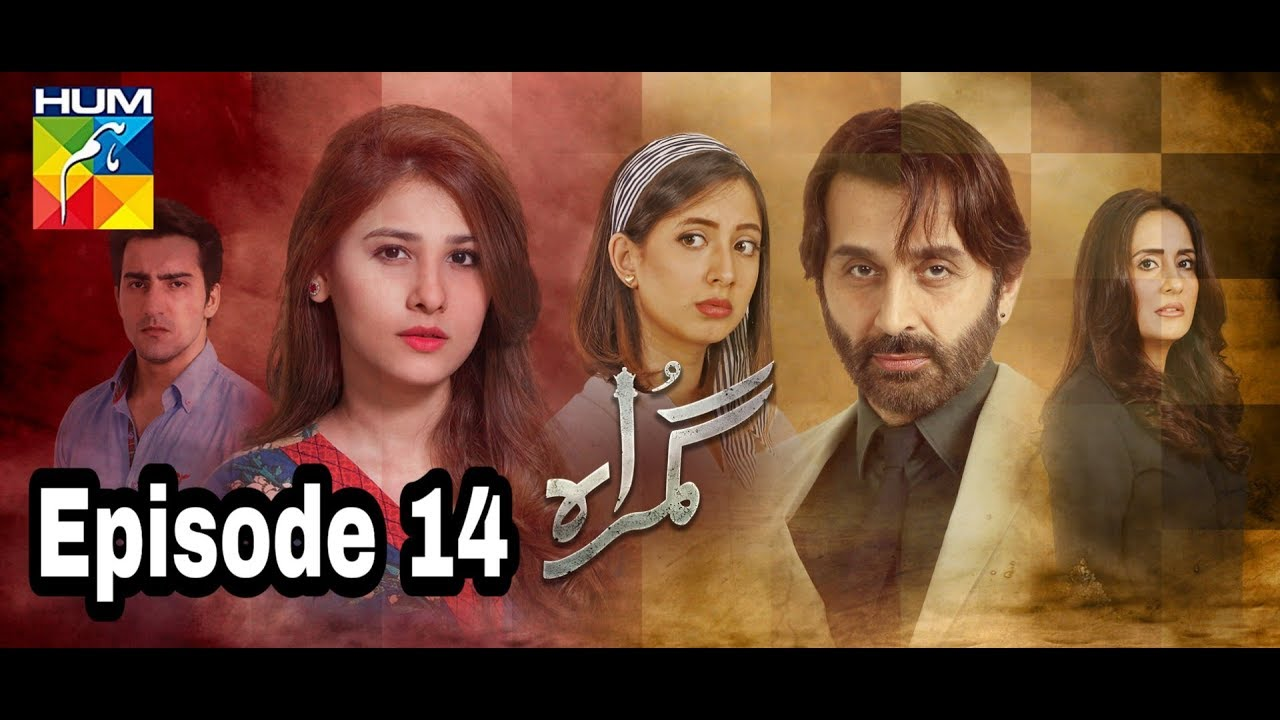 Gumraah Episode 14 Hum TV