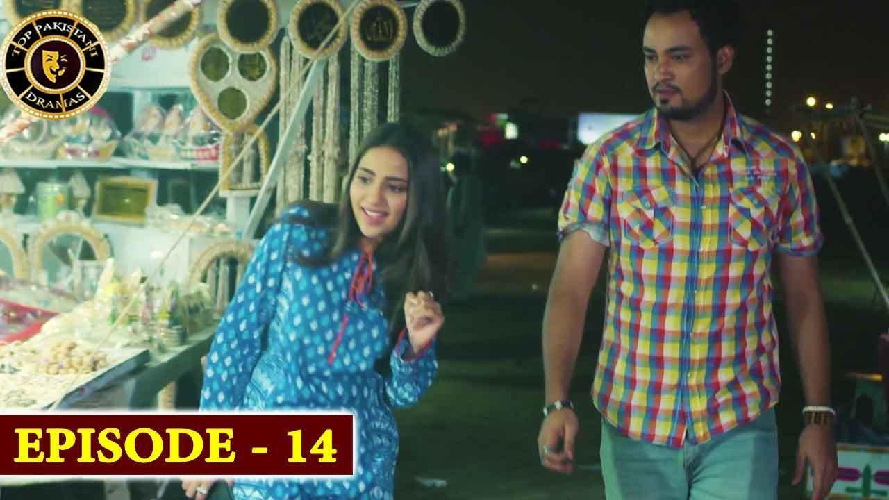 Gul-o-Gulzar | Episode 14 | Top Pakistani Drama