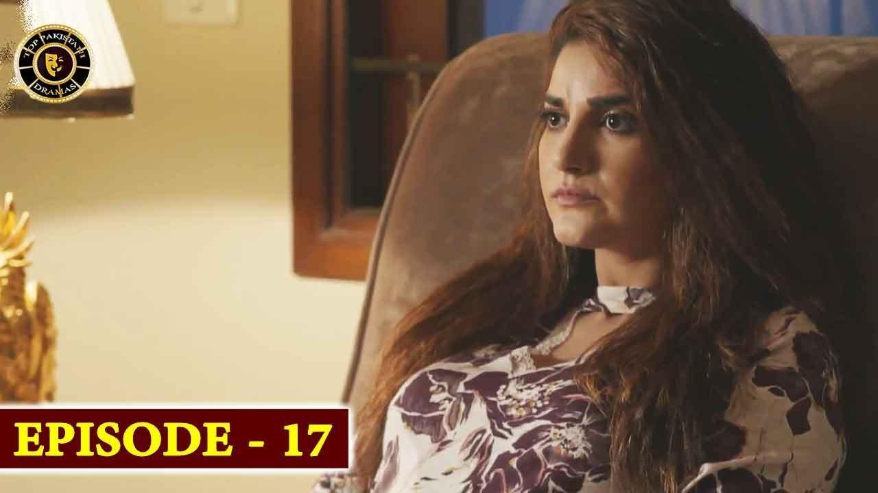 Gul-o-Gulzar Episode 17 | Top Pakistani Drama