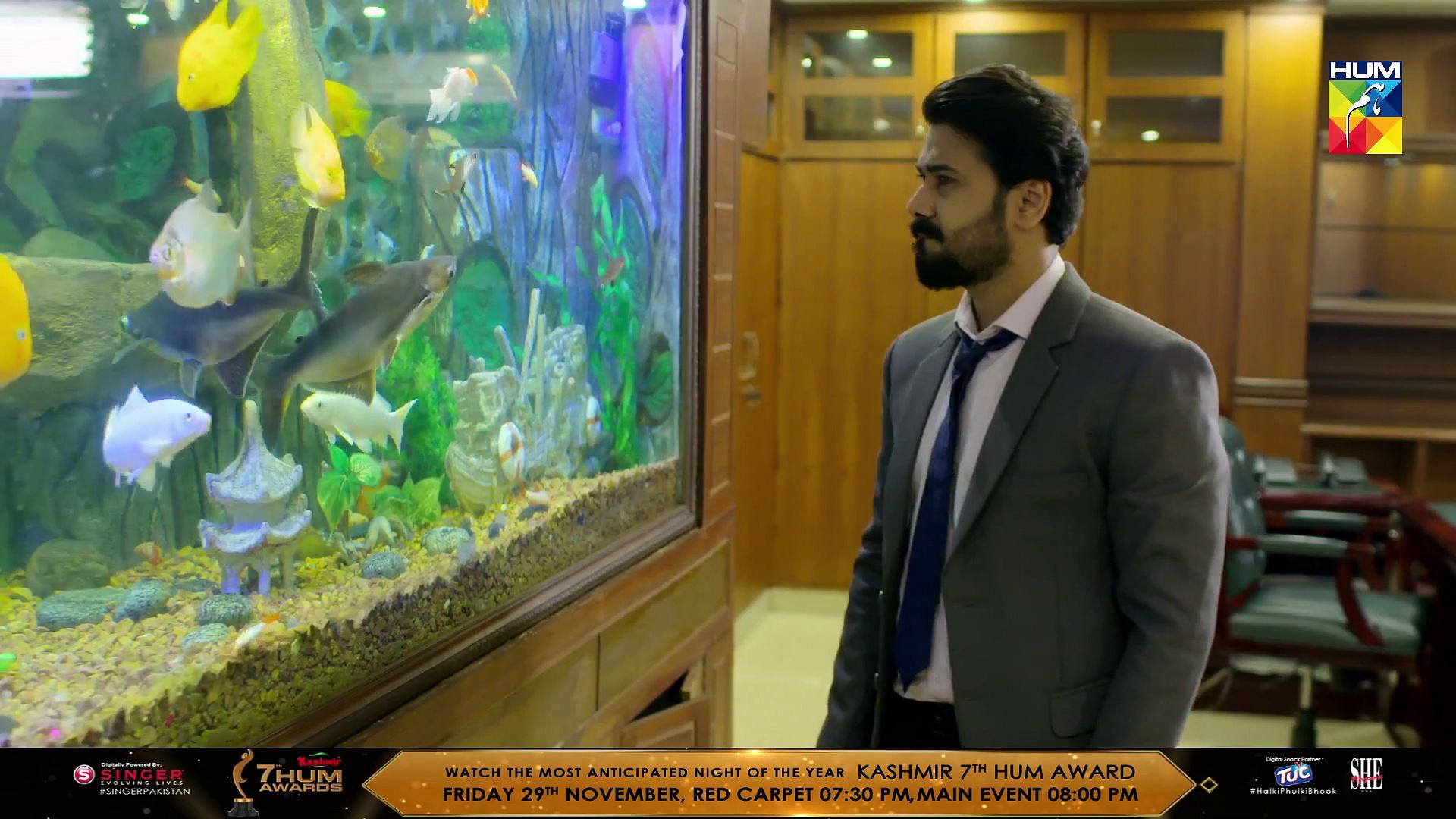 Naqab Zun Episode 31 HUM TV Drama 26 November 2019